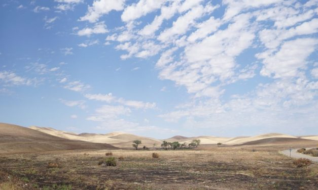 UNSW4: How well can the Australian climate model predict droughts?