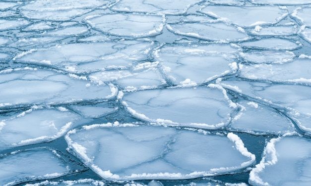 Mon01: Possible connections of the variations in Arctic and Antarctic sea ice