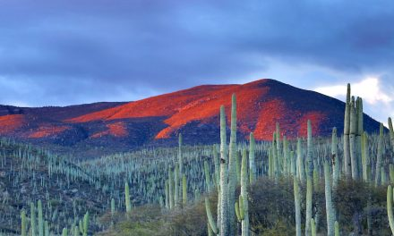 Research brief: what causes the annual Central American Drought?