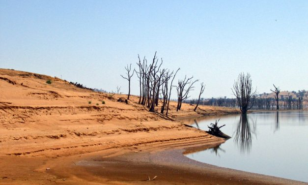 Research brief: How Central Pacific El Niños affect rainfall over the Murray Darling basin
